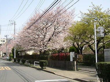itabashi-teikyou01