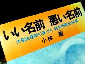 iinamae-kobayashi