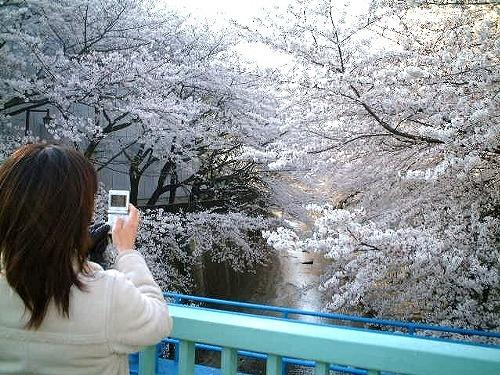itabashi-kamera