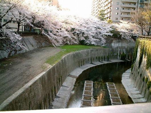 itabashi-kawa